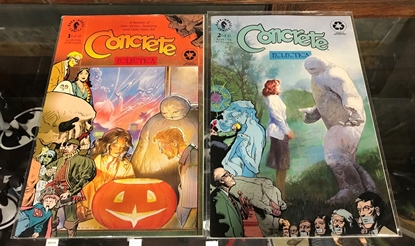 Picture of CONCRETE ECLECTICA (1993) #1 2 COMPLETE SET VF/NM